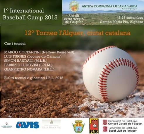 International Baseball Camp